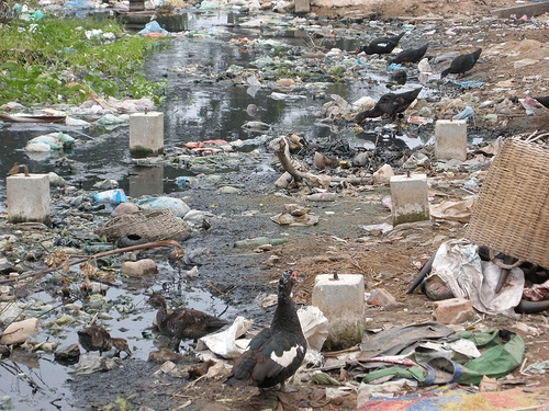 Polluted River Cambodia