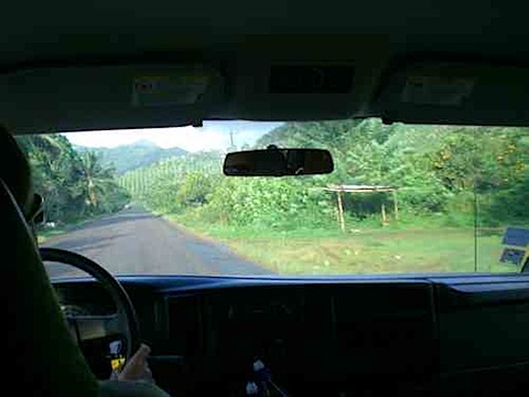 Drive Efficiently On The Road car green travel