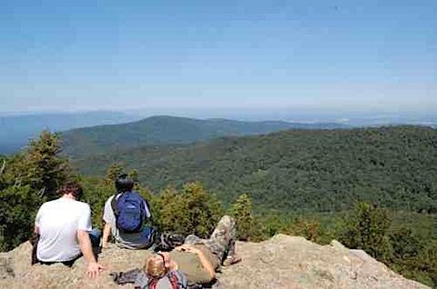 Shenandoah National Park Views