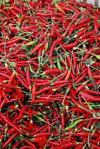 Relieve Illness with chili peppers