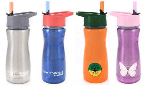 Eco Vessel Kids Insulated Stainless Steel Water Bottle Review