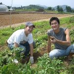 best places to WWOOF