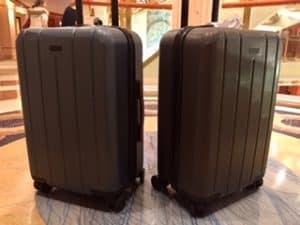 Chester Minima luggage