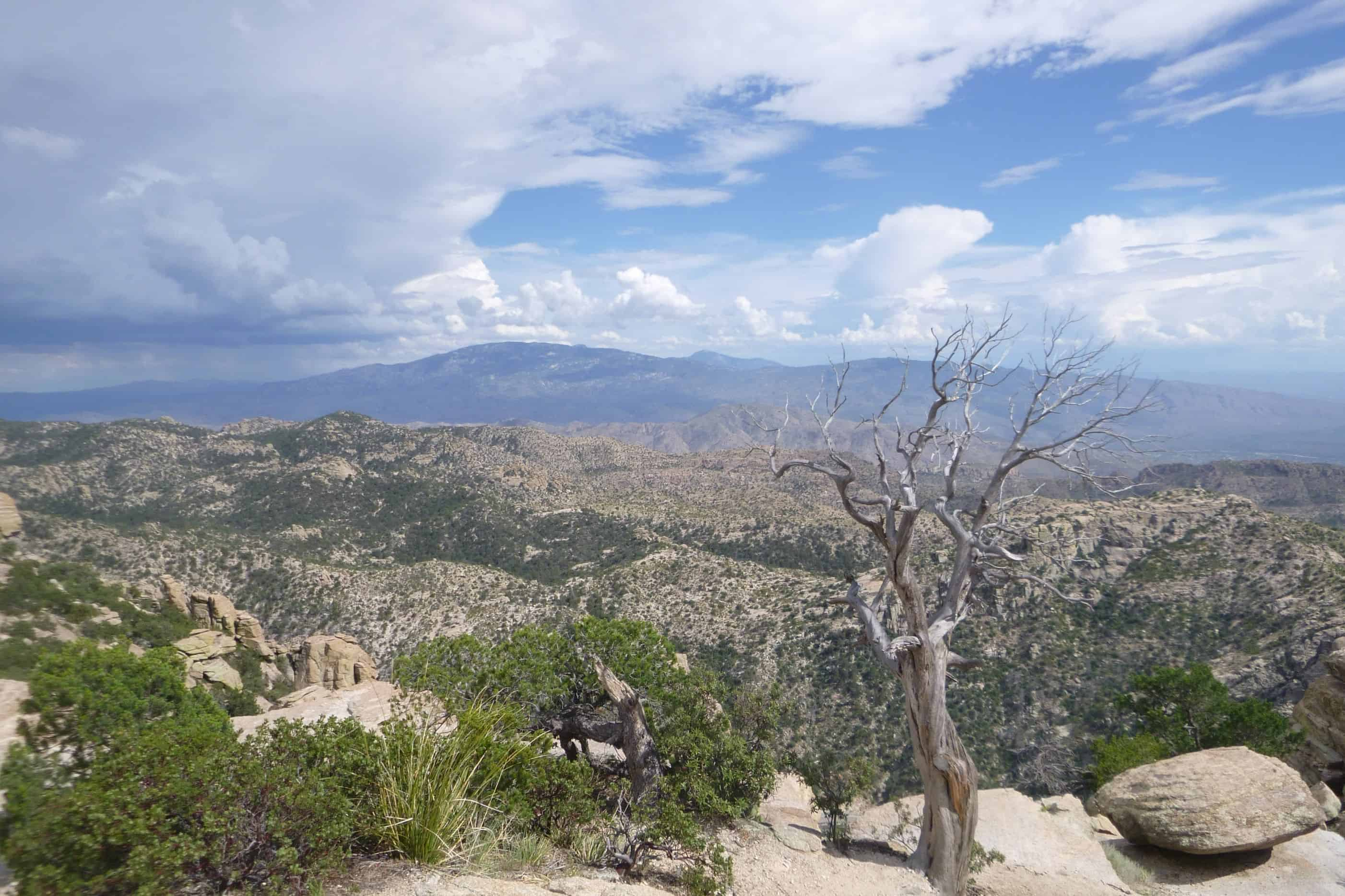 Tucson Attractions view at lookout on Mount Lemmon